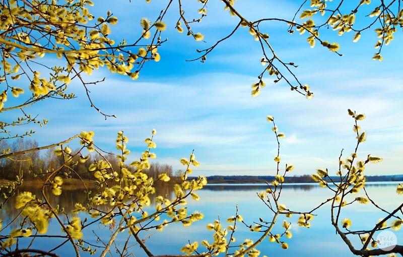 Картинки природа апрель май бесплатно