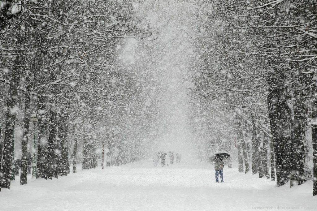 Картинки по запросу Самая холодная зима за сто лет - зима 2017-2018